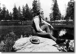 John Muir immersing himself in nature (Photo courtesy of National Park Service).