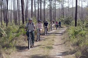 Long Pine Key Nature Trail