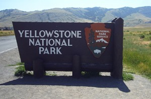 yellowstonelanding3