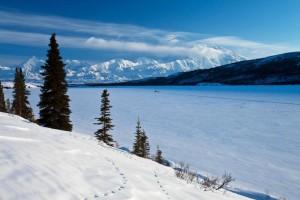 Denali landscape Wonder Lake NPS